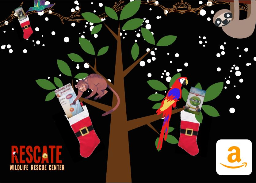 Cute graphic of animals in a tree looking at Christmas stockings containing vet items and food